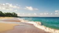 Tropical White Sand Beach video