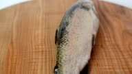 Trout fish on a board. video