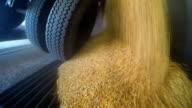 Truck Unloading Corn Grain video