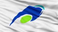 Tsu Capital City Close Up Waving Flag video