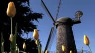 Tulip Garden and Windmill video