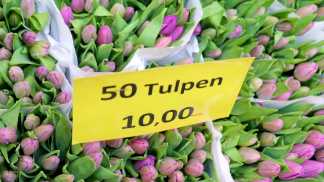 Tulips packed in 50s for sale in the flower market video