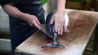 Tuna processing at the fish market video