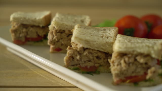 tuna sandwich video