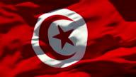 Tunisia Flag video