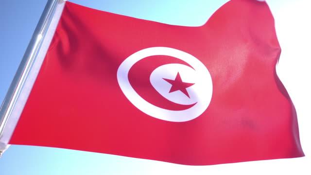 Tunisian Flag video