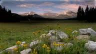 Tuolumne Meadows in Yosemite  National Park video
