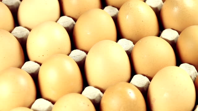 Turning brown Eggs video