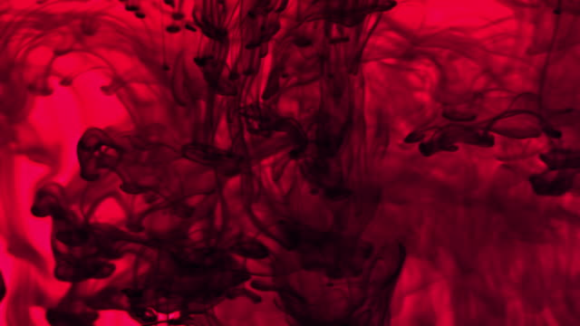 Turning red video
