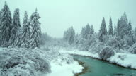 Turquoise River With Trees In Snow video