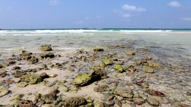 turquoise sea water waves with sand beach and stone on blue sky background video