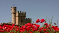 Tuscany, Italy. Castle with Red Poppies in Springtime. video