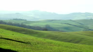 tuscany landscape of the countryside near Siena video