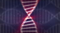 DNA twisting on a seamless looped background video