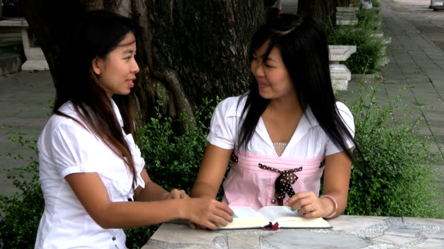 Two Asian Girls Doing Schoolwork video