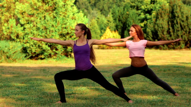 Two beautiful girls doing yoga in the park video