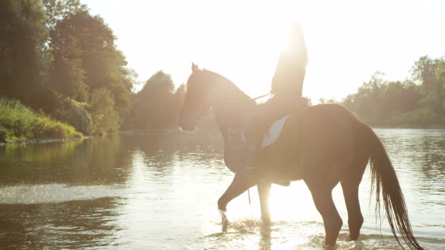 SLOW MOTION: Two beautiful girls riding horses along the river at golden sunrise video