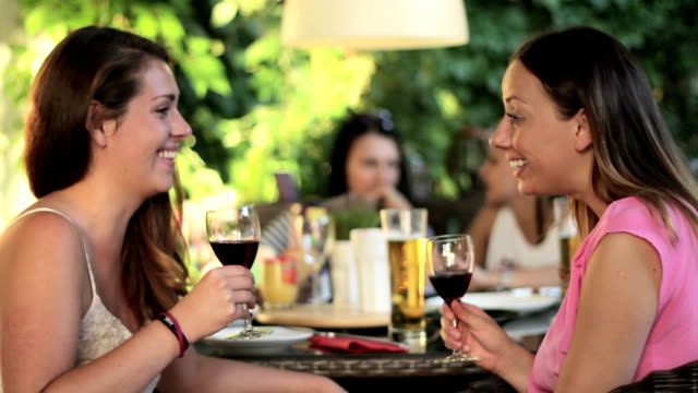 Two beautiful young women having fun drinking red wine together video