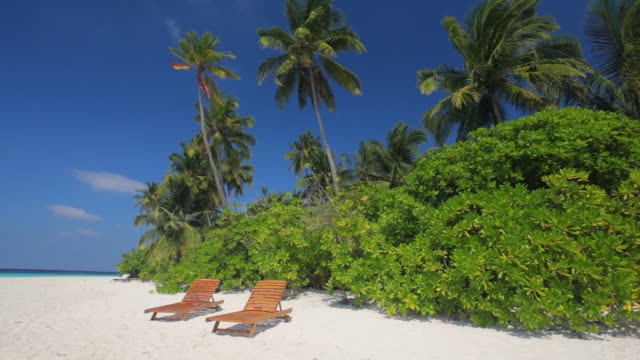 two beds on beach with palmtrees video