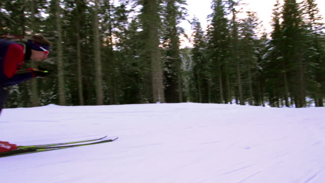 HD: Two biathlon competitors at downhill video