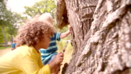 Two boys exploring nature with magnifying glass video