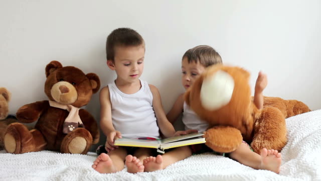Two boys, reading a book, teddy bears around them video