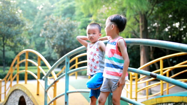 Two brothers play in the park video