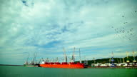 Two Cargo Ship, Red and Green, Loaded in the Port of Cargo.Wide shot video