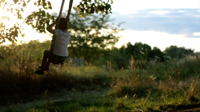 Two children, boy brothers, having fun on a swing in the backyard on sunset video