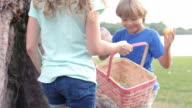 Two Children On Easter Egg Hunt In Garden video
