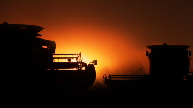 Two combines at sunset video