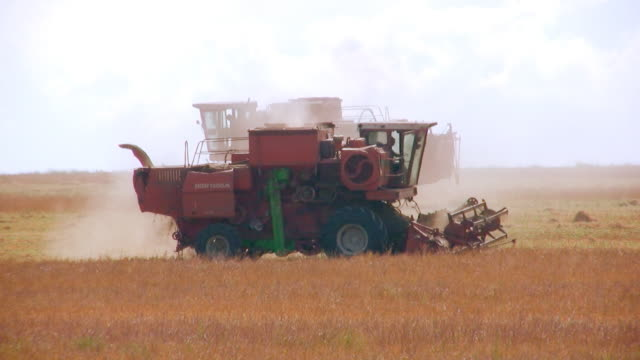 Two combines video