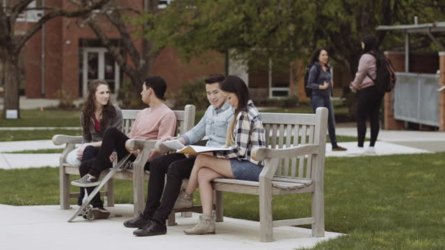 Two couples relaxing on wooden benches video
