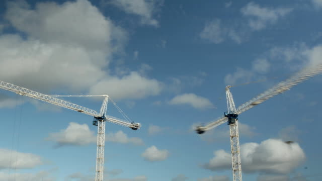 Two cranes. Timelapse. video