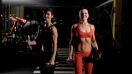 two cute girls doing exercises with dumbbells video