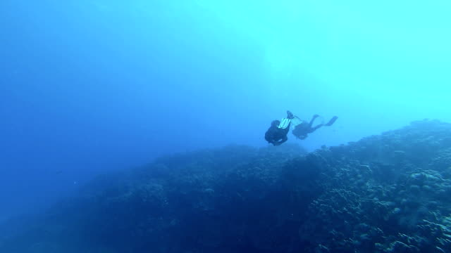 Two Divers video