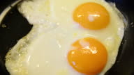 two fried eggs in a pan video