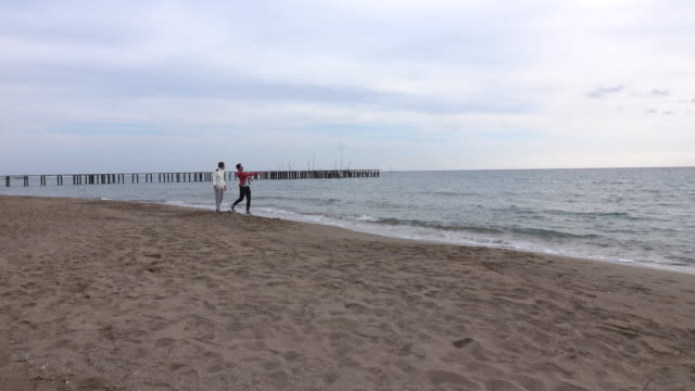 Two Friends On The Beach Together video