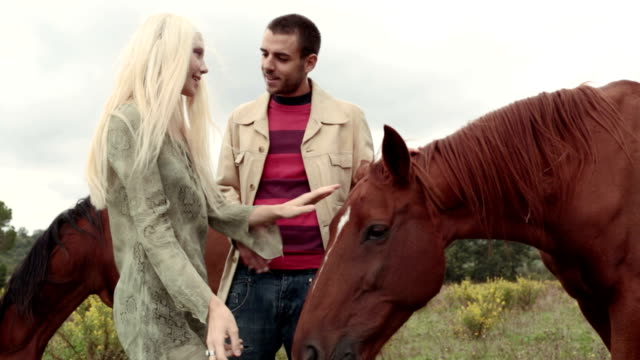 Two friends or couple in nature outdoor stroke and feed brown horse - HD video footage video