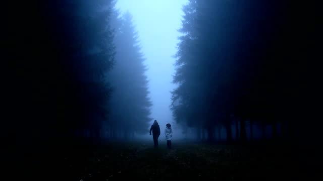 Two friends taking a walk video