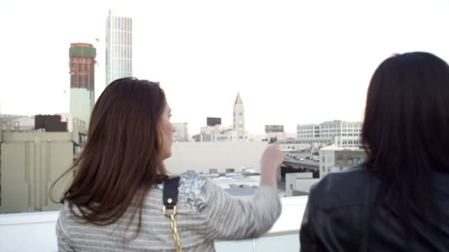 Two girlfriends stand on a roof and look out to a city video