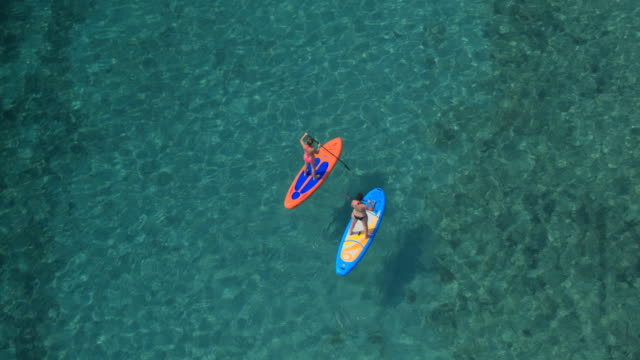 AERIAL: Two girlfriends stand up paddle boarding in stunning crystal clear ocean video