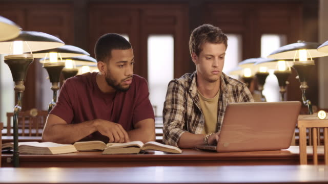 DS Two male students studying together in the library video