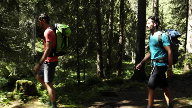 two man people walking on sunny forest woods trail path. Group of friends summer adventure journey in mountain nature outdoors. Travel exploring Alps, Dolomites, Italy. 4k slow motion 60p video side video