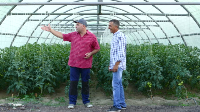 Two men in greenhouse video