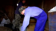 Two men sifting grain with vintage machine in rural farm barn video