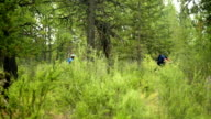 Two mountain bikers ride through think forest video