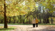 Two older women walking along the autumn park alley talking together video