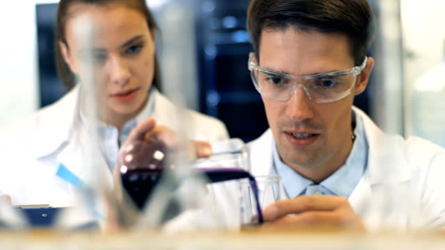 Two scientists working together at the laboratory video