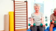 Two senior citizens working with physiotherapist video